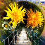 Innere Reise - Weg ins Unterbewusstsein